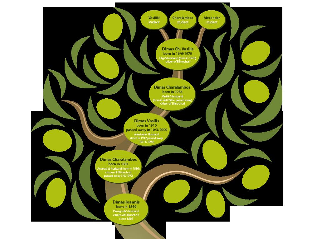 https://biodimas.gr/wp-content/uploads/2020/05/biodimas-tree-en.png